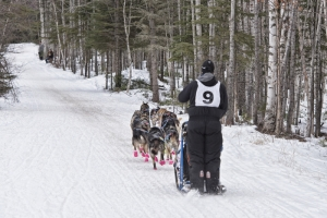 CANADIAN CHALLENGE INTERNATIONAL SLED DOG RACE 2017