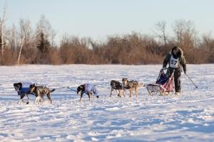 CANADIAN CHALLENGE INTERNATIONAL SLED DOG RACE 2018