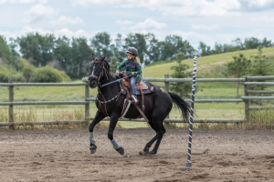 PORCUPINE PLAIN - QUILLY DAYS RODEO 2017